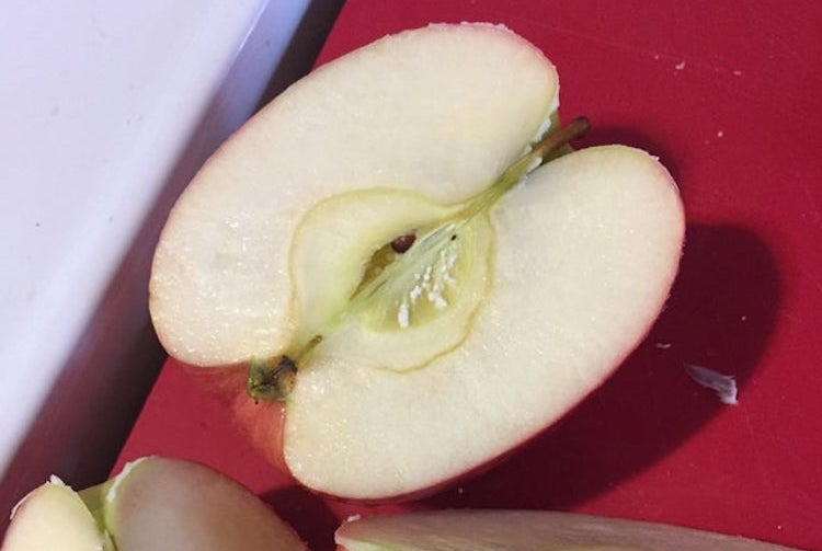 i thought i kept seeing white mold in the core of my apples, so of course, i had to look it up