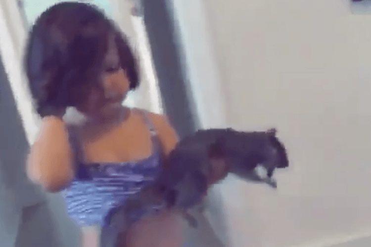 girl brings home dead squirrel as pet in viral video