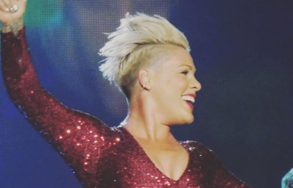 Pink Perfectly Trolls Mom-Shamers by Dying Her Daughter's Hair Following Jessica Simpson Controversy