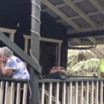 Woman Uses Her Retirement Savings To Give Grandparents The Ultimate Gift: A New Home
