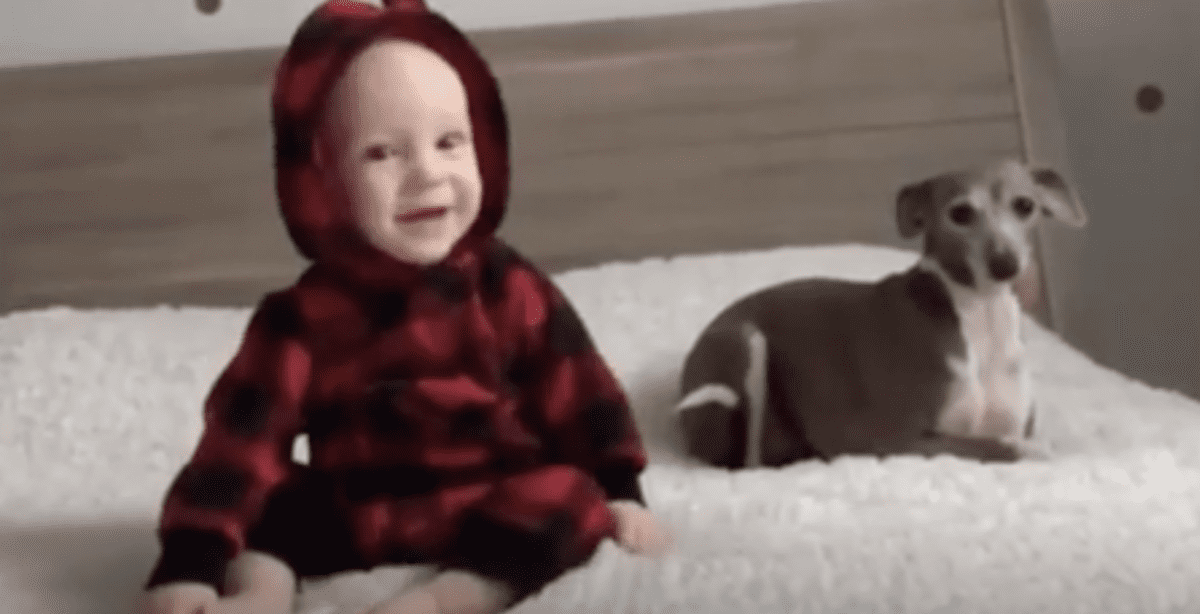 This dog-baby friendship is everything