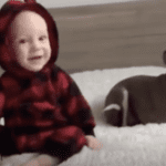 This Dog-Baby Friendship Is Everything!