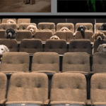 Service Dogs Attend 'Billy Elliot' To Learn Proper Theater Behavior