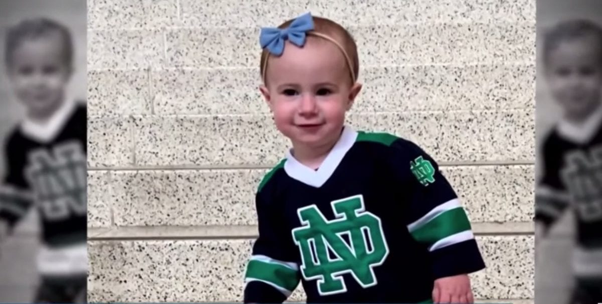 grandfather of toddler chloe wiegand who plummeted to her death while on a cruise is charged with negligent manslaughter | parenting questions | mamas uncut screen shot 2019 10 30 at 9.54.07 am