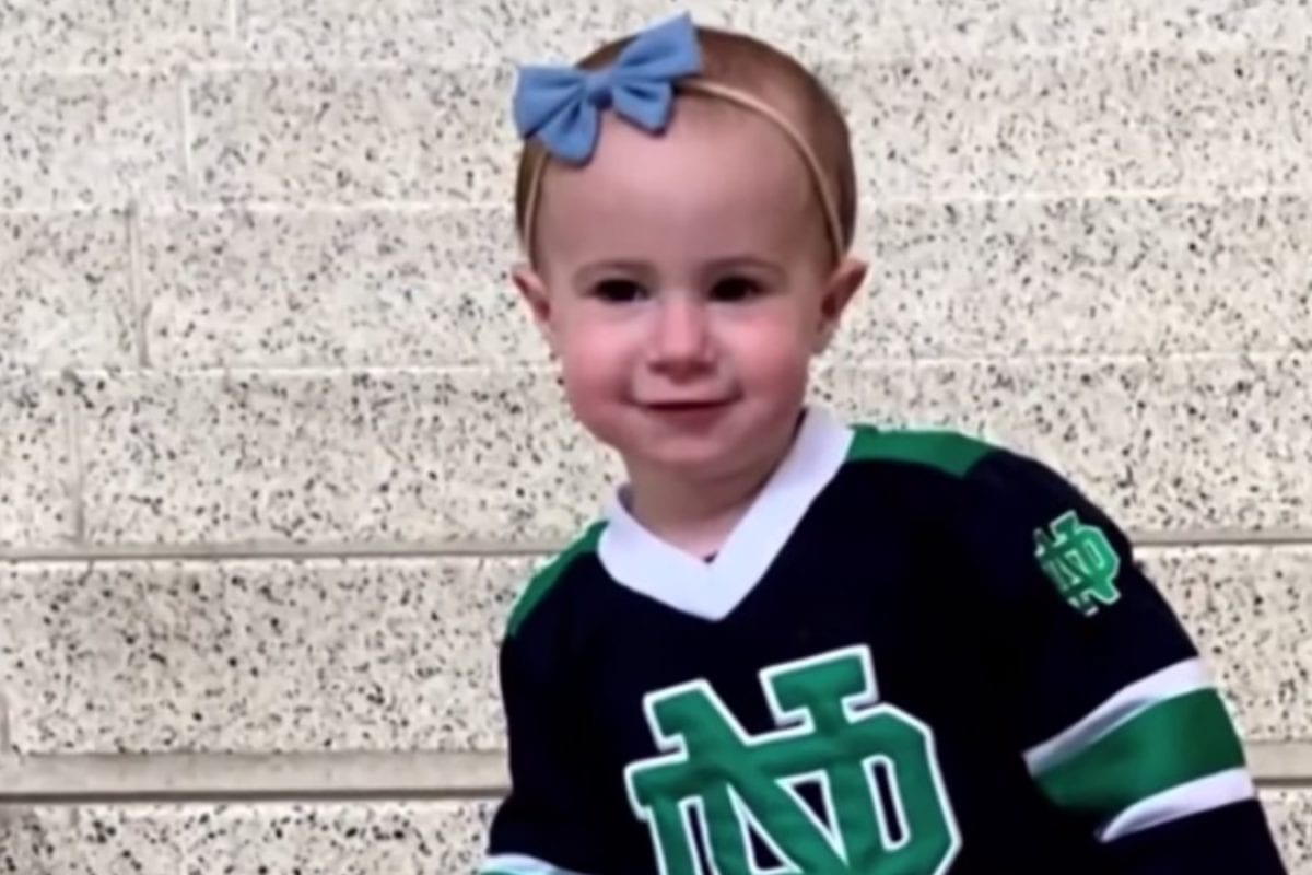 chloe wiegand's grandfather officially pleads guilty in front of a judge after taking a plea deal