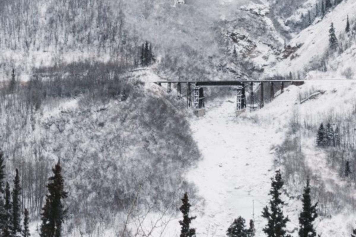 shoeless 5-year-old carries toddler through cold alaska snow