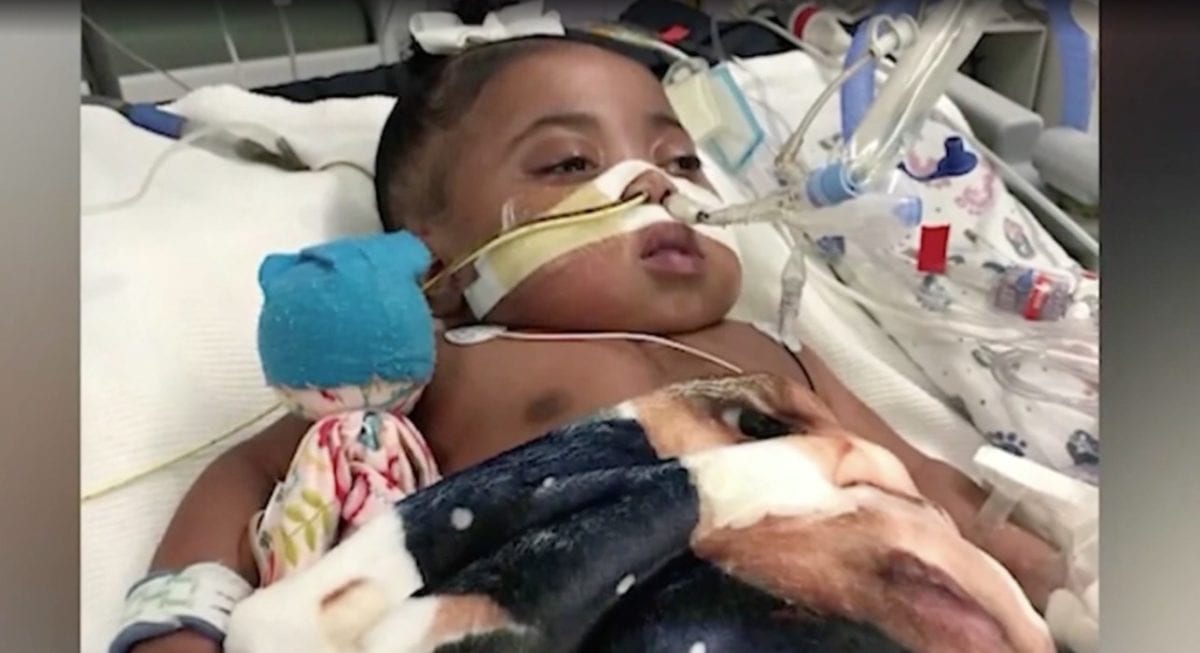 judge gives hospital permission to take child off life support after 11 months despite parents wishes, parents keep fighting