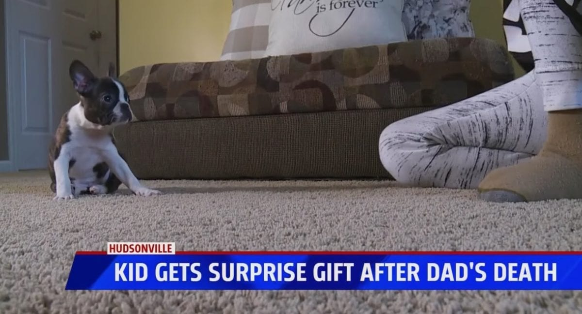 'the best gift i've ever gotten': late father surprises teen son with a puppy for his birthday five days after he passed away | thirteen-year-old logan kavaluskis recently lost his father after a nearly decade-long battle with cancer. after an unimaginable loss, logan received a belated birthday present from his dad.
