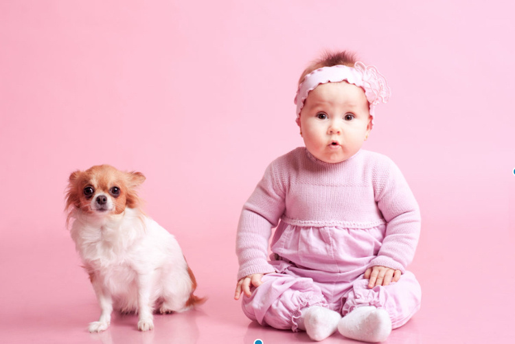 30 baby names for animal lovers