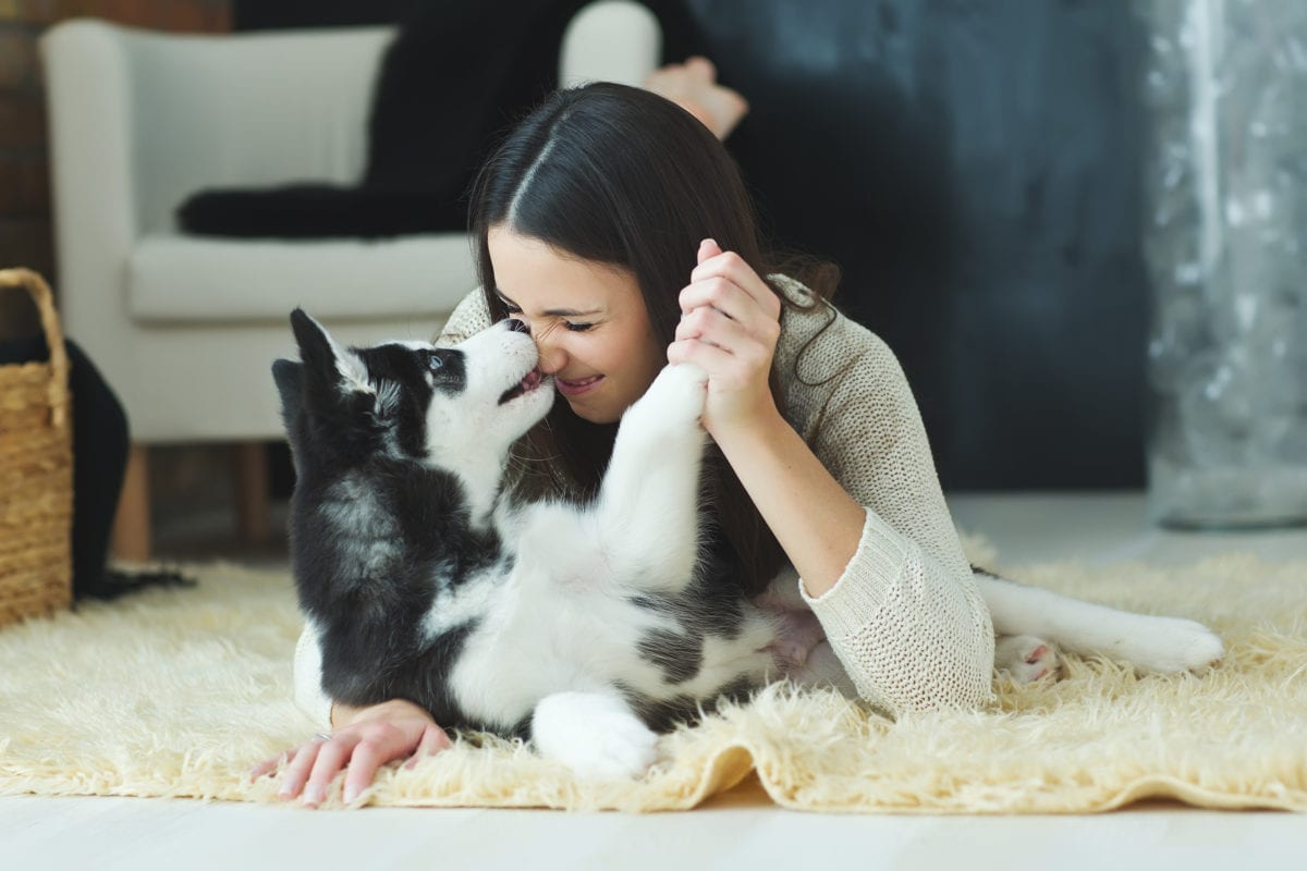 40 Percent Of People Admit To Have Swiped Right On Their Dating Apps Just So They Could Meet A Dog