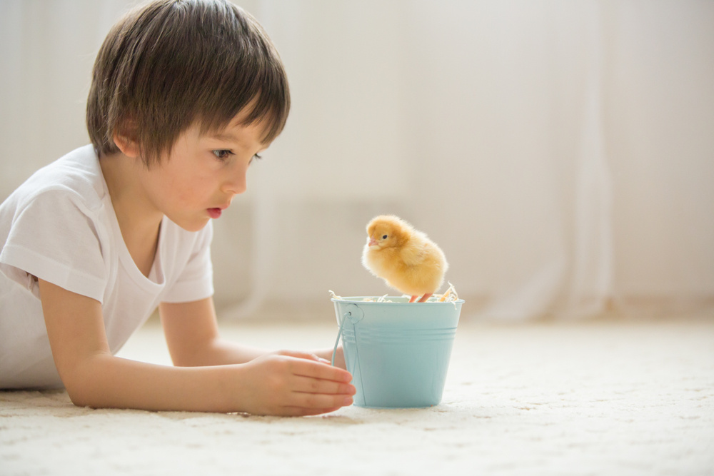25 Soaring Baby Names for Bird Lovers