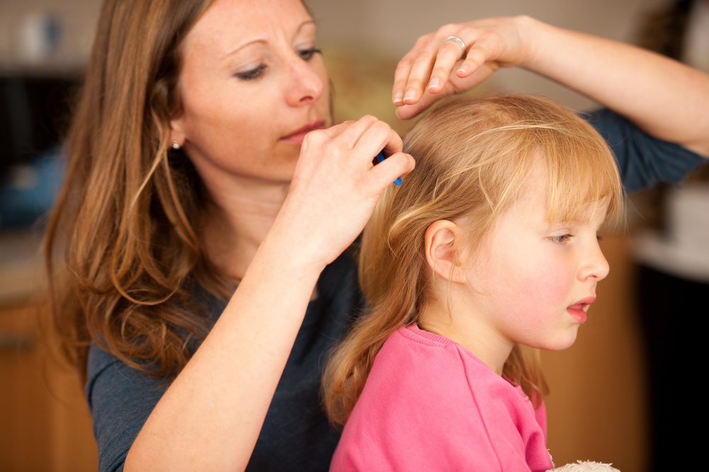My Baby Came Home from Her Dad's with Lice: How Can I Get Rid of Them ASAP?