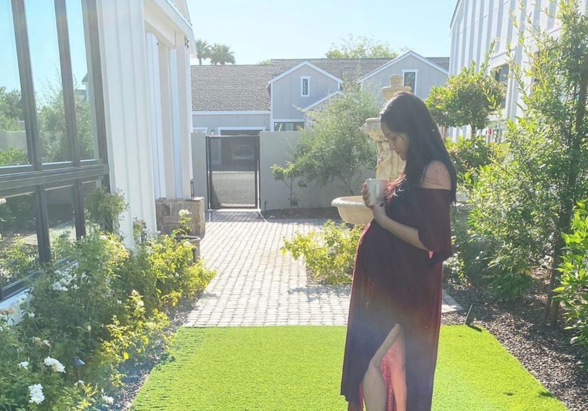 nikki bella reveals in pregnancy update on baby bump
