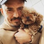 Orlando Bloom Reveals Dog Mighty Is Dead and Honors Him with the Sweetest Tattoo