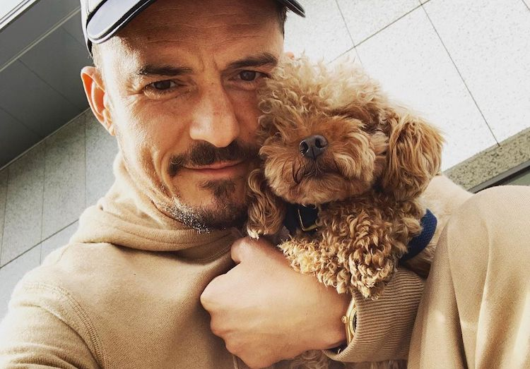 Orlando Bloom Gets the Sweetest Tattoo to Honor Dead Dog, Mighty