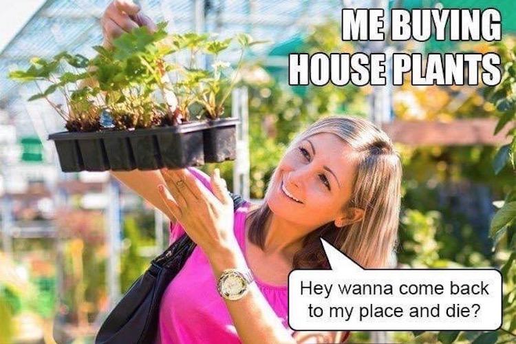 MU's 35 Funniest Meme of the Week