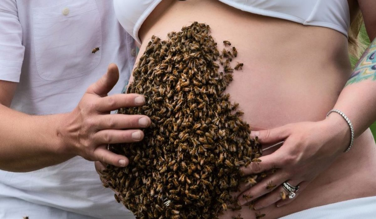 'This Photo Represents So Much More': Pregnant Mom's Pregnancy Shoot Which Features Thousands of Bees Goes Viral