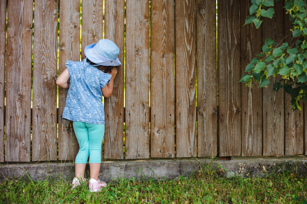 My Elderly Neighbors Let Their Granddaughter Enter My Yard Every Day Without Permission: Advice?