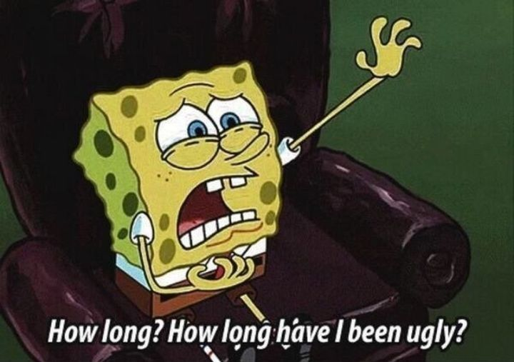 15 hilarious spongebob squarepants memes | spongebob squarepants premiered on nickelodeon over 20 years ago (!!!), but the show's humor is still as relevant as ever. with social media, fans old and new have resurrected the show, sharing some of their favorite moments with spongebob, mr. krabs, patrick, squidward, sandy, and plankton.