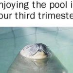 15 Very Funny Pregnancy Memes About the Not-So-Funny Parts of Being Pregnant
