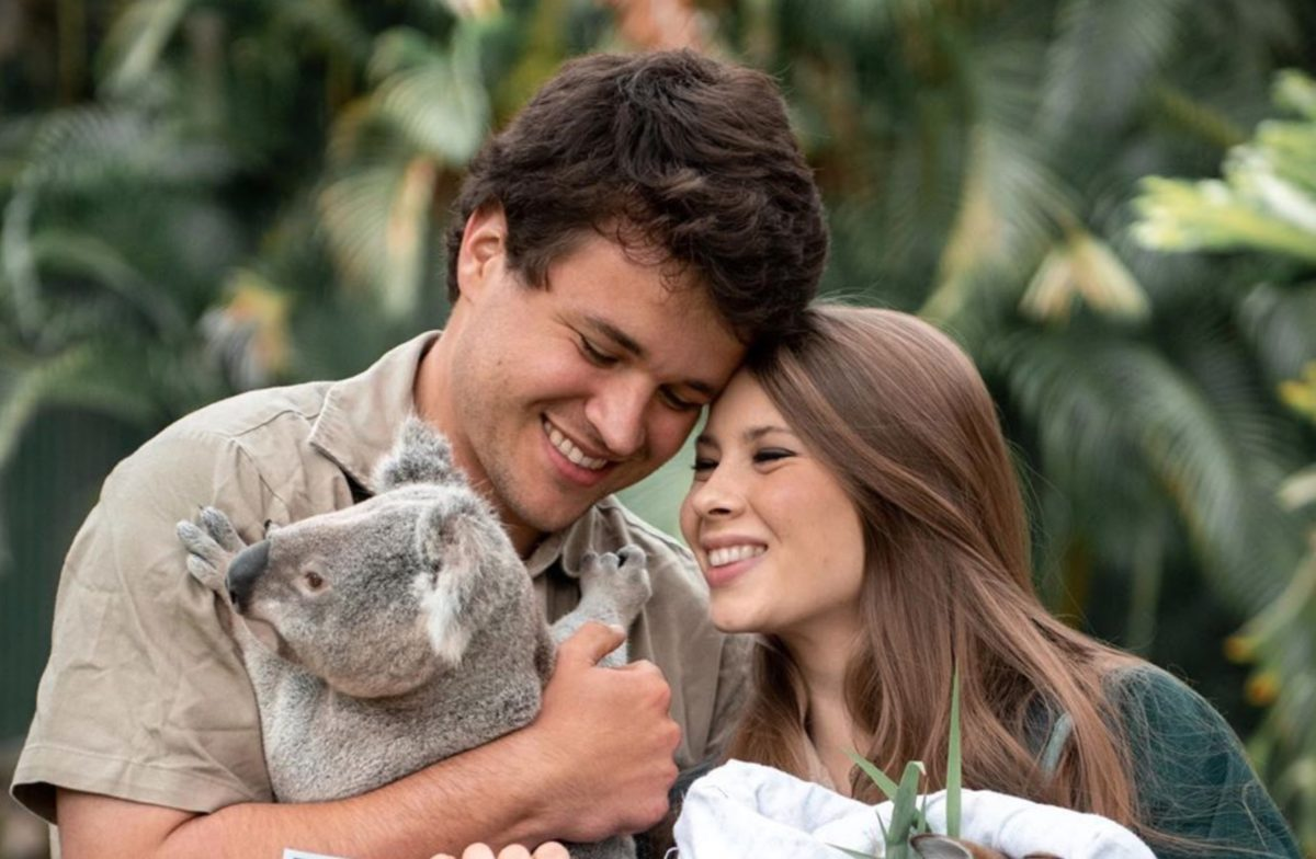 Bindi Irwin and Chandler Powell Take to Instagram to Give Their Beloved Followers a Pregnancy Update, This Time With Sonogram Photos Included