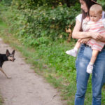 Our Dog Has Become Aggressive Towards My Daughter and Me, and It's Tearing Our Family Apart: Advice?