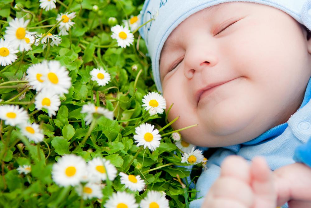 25 fine flower baby names for boys