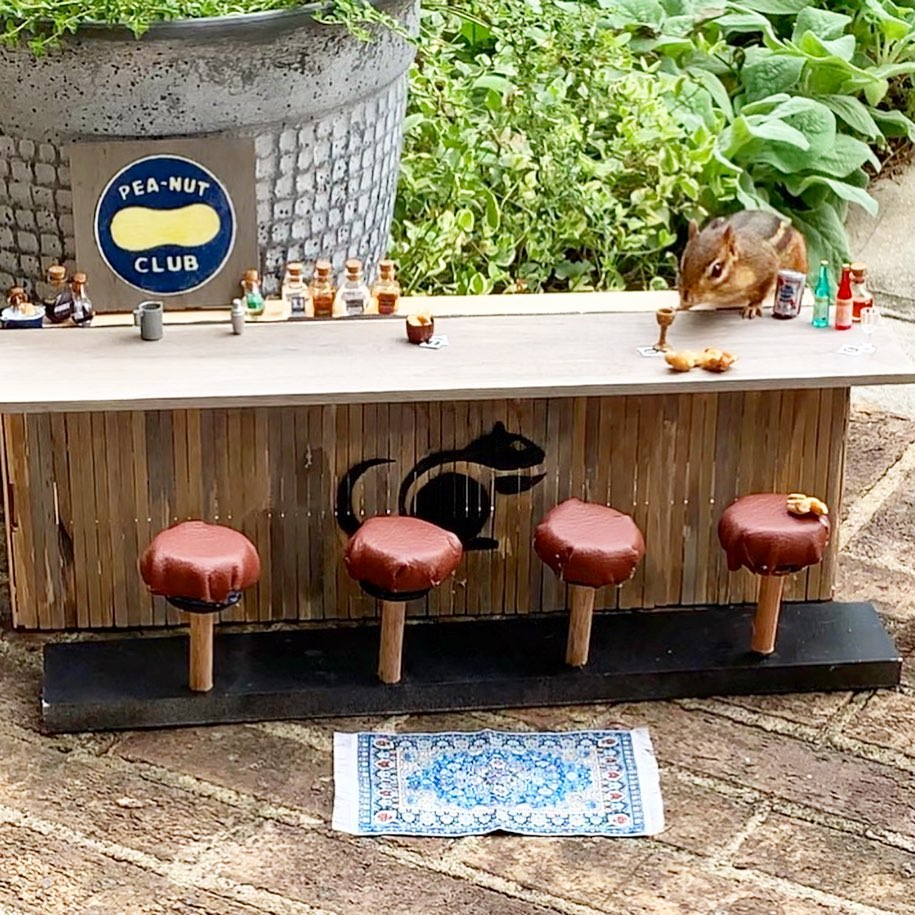 The restaurant for a chipmunk features a bar with stools and drinks called the Peanut Club