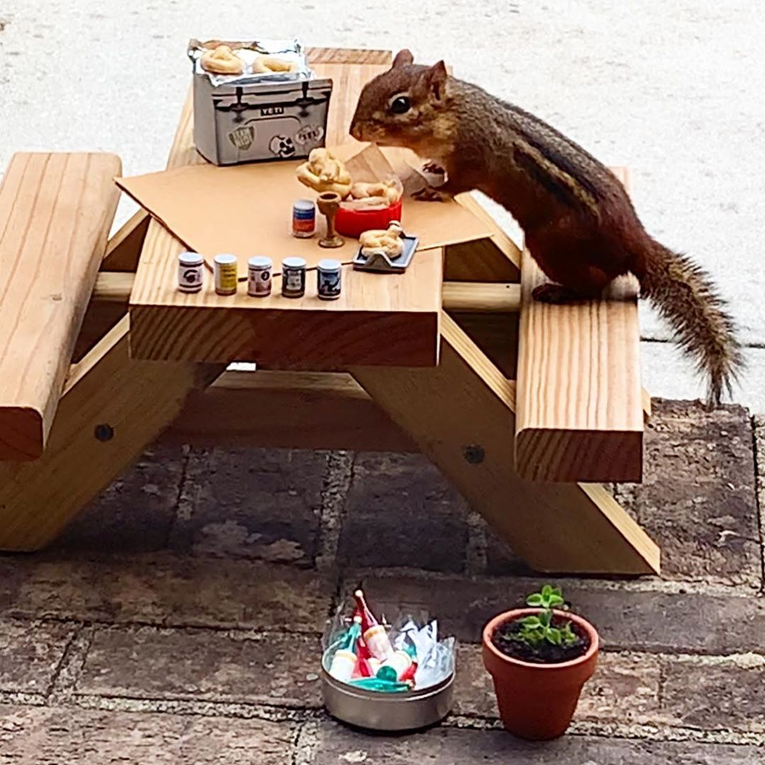 The restaurant for a chipmunk serving a flight of beer along with salt free mini pretzels
