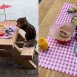This Restaurant for a Chipmunk Is Serving Up Pure Joy