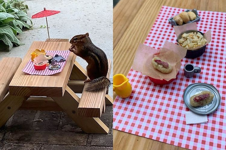 The restaurant for a chipmunk features a bar and picnic table, and serves pizza, sushi and the silly joy we all need right now.