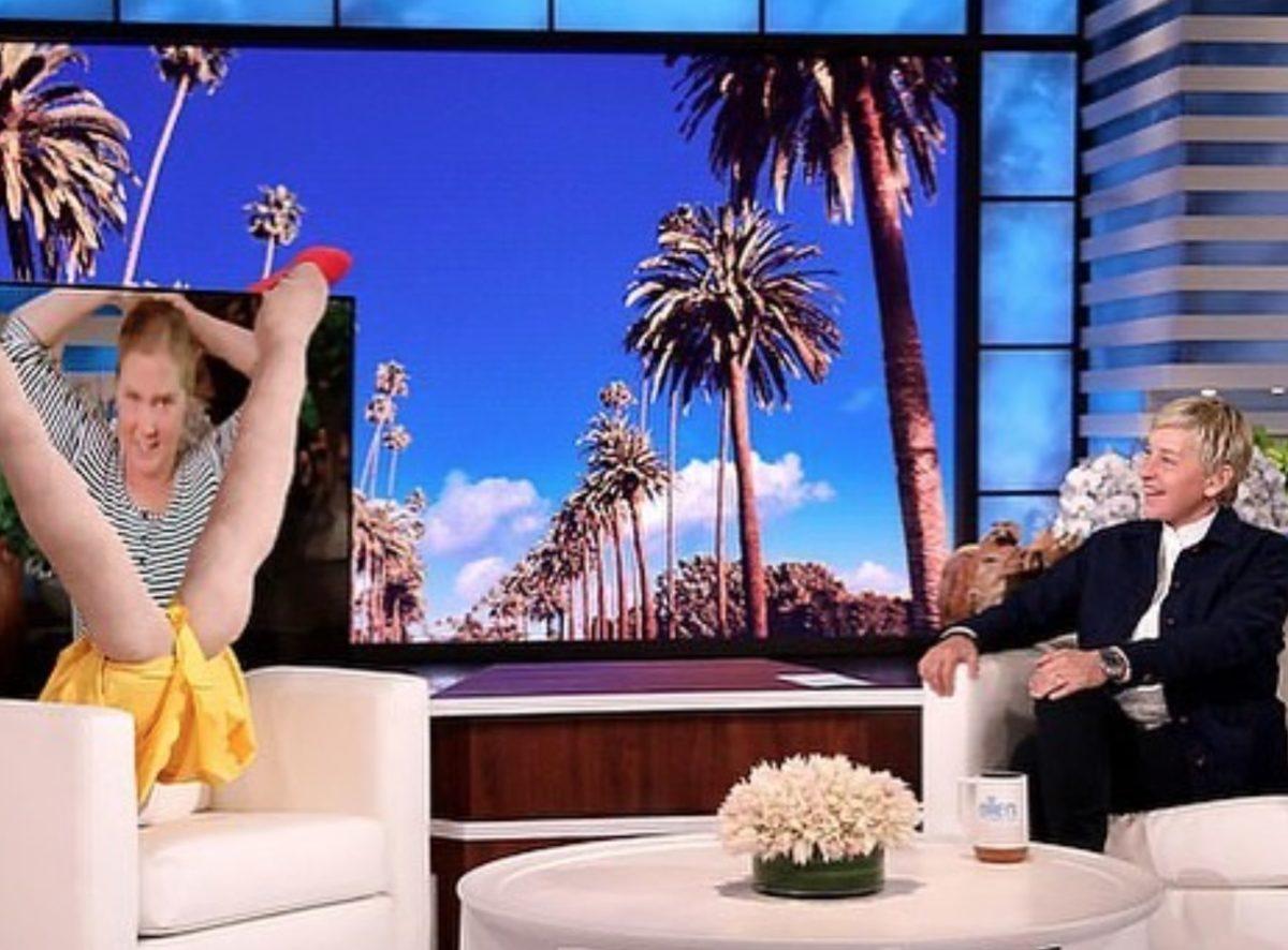 Amy Schumer's 16-Month-Old Crashes Interview With Ellen