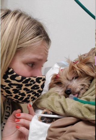 Kristen Bell and Daughters Say Goodbye to Beloved Family Dog Named Barbara