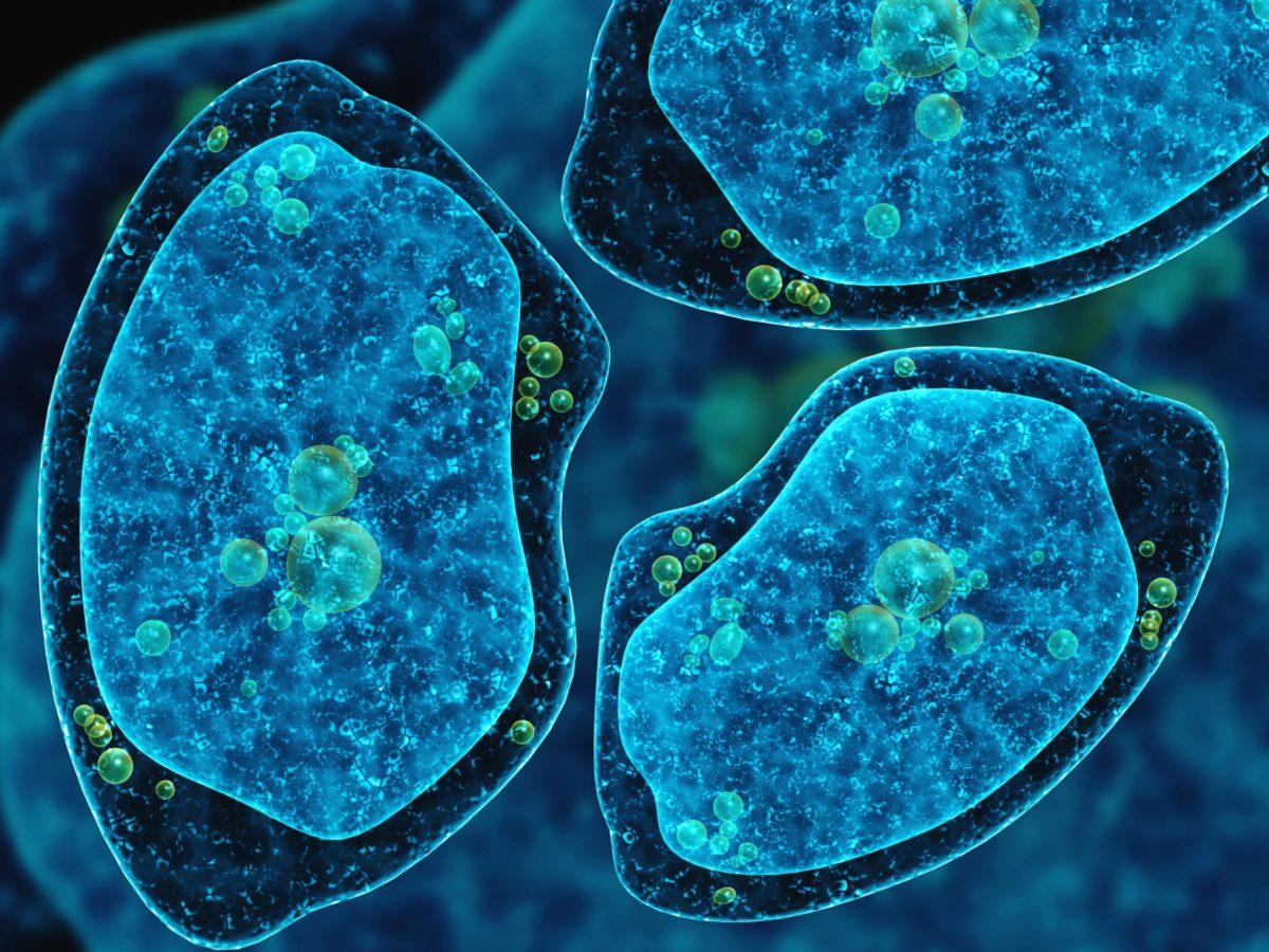 Brain Eating Amoeba-Contaminated Water Isn't Going Anywhere