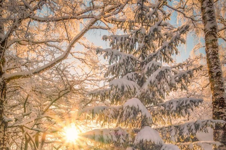 12 winter wonderlands that really exist here on earth | parenting questions | mamas uncut 128100742 508337490124394 7811663543282001865 n
