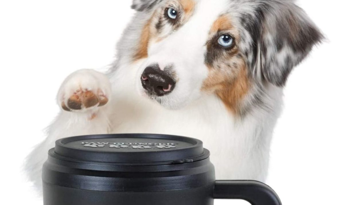 Pets Like Christmas Too, Here Are the 27 Best Gifts For Your Furry Companion