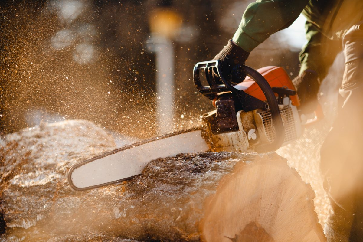 chainsaws were invented for childbirth and we are horrified