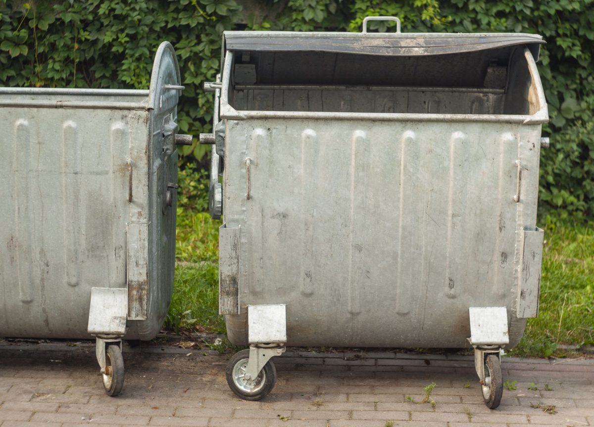 mom arrested 17 years later for leaving twins in garbage can