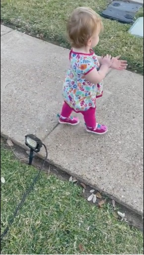 meet the baby 'born in 2020' who thinks everything is hand sanitizer in viral video | the pandemic-related content we all need and deserve! check out this viral video of a cute baby who thinks every object dispenses hand sanitizer.