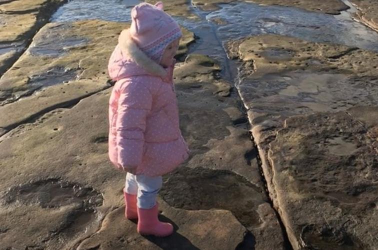 4-year-old finds 220 million-year-old dinosaur footprint