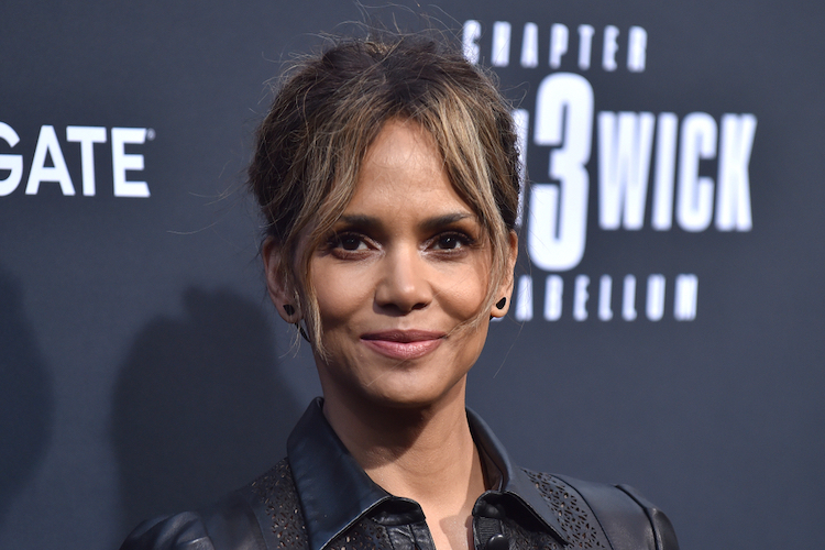 Halle Berry Compares Child Support Payments to Ex Gabriel Aubry to 'Extortion'