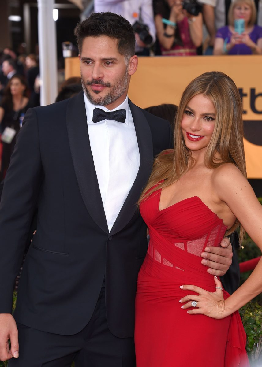 court rules sofia vergara's ex-fiance can't use embryos