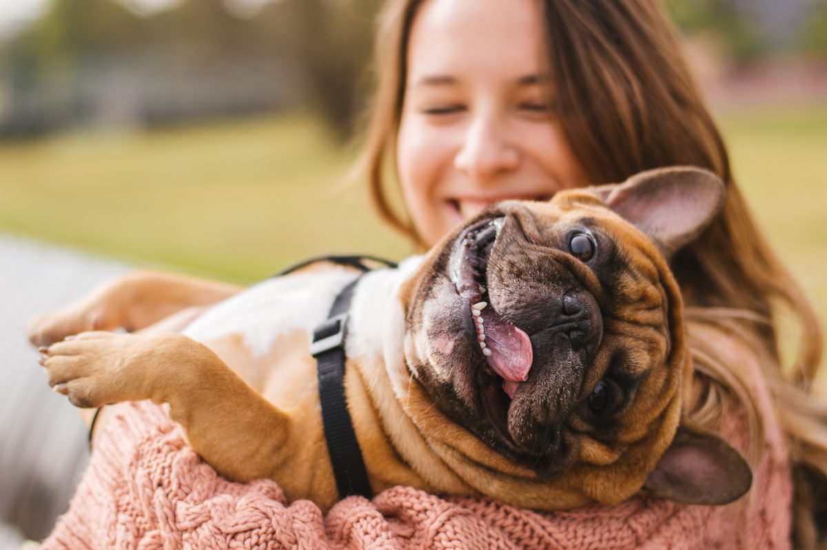 are you on the fence about getting a pet? here are 10 health benefits of having a pet   can having a pet improve your mental and physical health? studies show that pets can have improved issues with depression, heart health, and socialization.