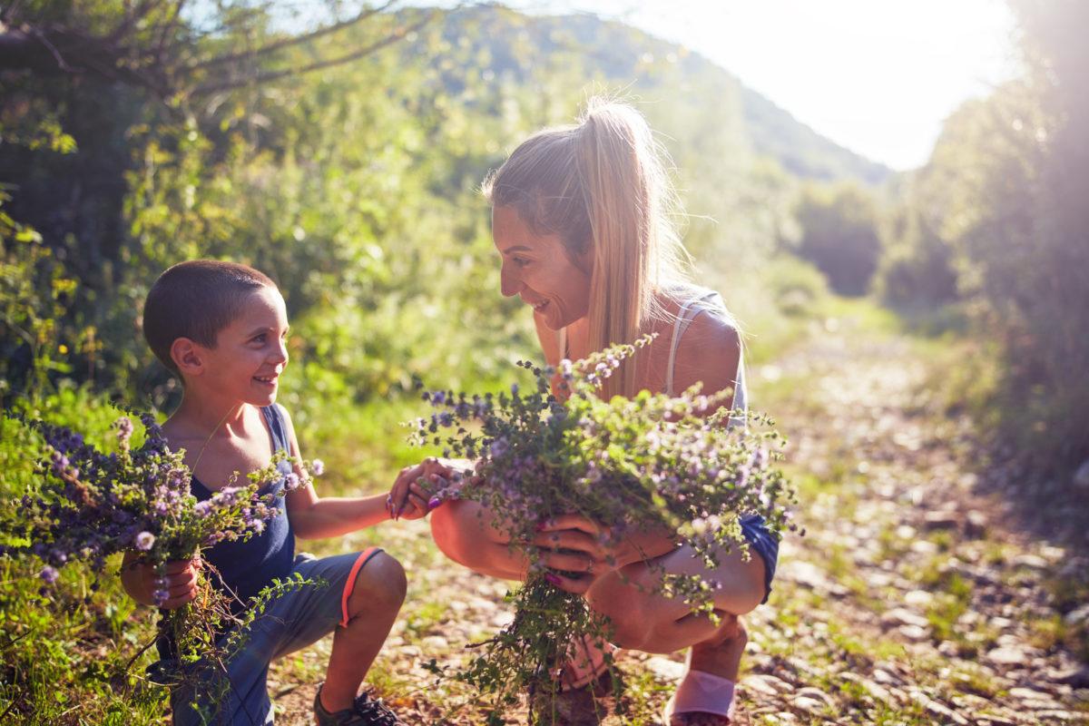 herb plant walk fun