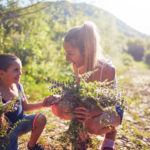Looking For a Fun Summer Activity To Do With the Kids? Go On a Plant Discovery Mission