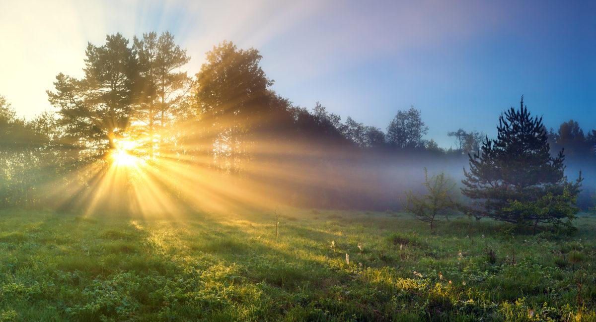 sunlight health 2