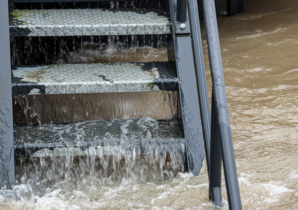 parents die with their 2-year-old in flooded nyc basement apartment due to hurricane ida