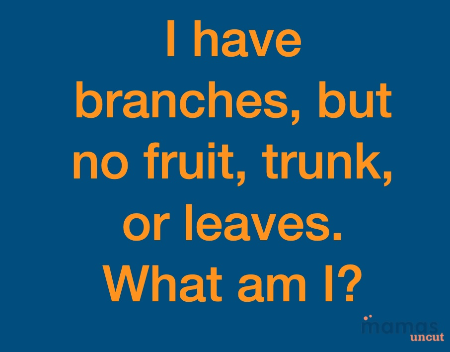 i have branch, but no fruit, trunk, or leaves. what am i?   i have branch, but no fruit, trunk, or leaves. what am i?