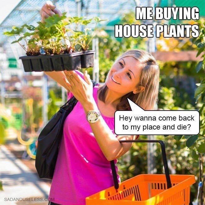 MU's 35 Funniest Memes of the Week